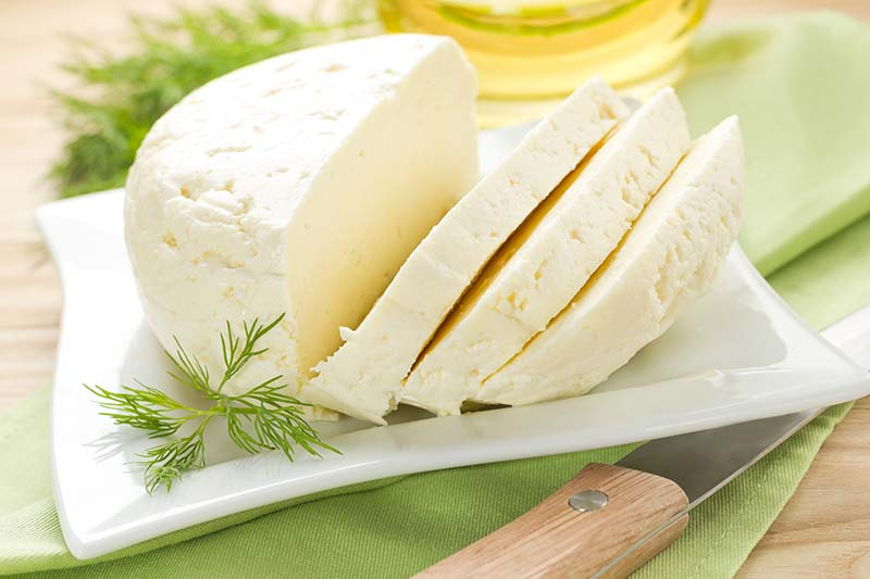 What Is Cottage Cheese - Shan Kitchen